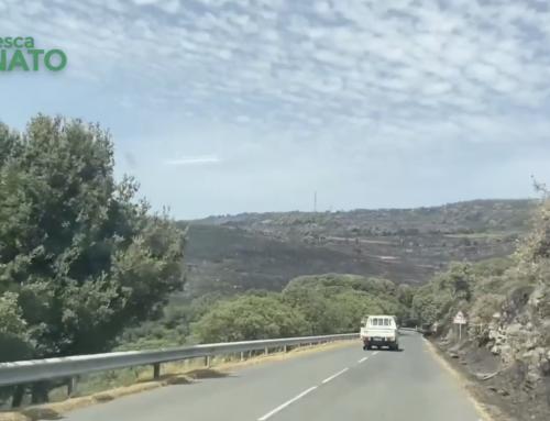 Viaggio in Sardegna nei luoghi flagellati dal fuoco